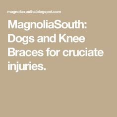MagnoliaSouth: Dogs and Knee Braces for cruciate injuries.