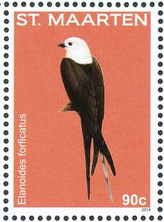 Swallow-tailed Kite stamps - mainly images - gallery format