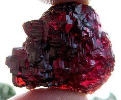 Natural High Luster Spessartite Garnet. Excellent Translucency, Navagadora Mine, Brazil Credit: GoldenHourMinerals