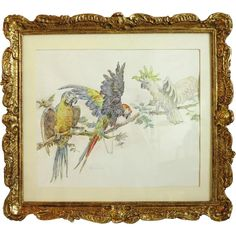 Antique watercolor painting , signed , century from chateau on Ruby Lane Antique Art, Vintage Art, Vintage Antiques, Vintage World Maps, Ruby Lane, Painted Signs, Hand Painted, Bird Art, 19th Century