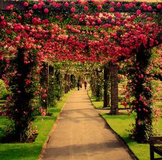 Looks like the rose arbor at The Huntington Library, California Garden Paths, Garden Landscaping, Rose Arbor, My Secret Garden, Dream Garden, Pink Garden, Colorful Garden, Flowers Garden, Pathways