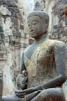 """Phra Chai: ภาพ """"ฉันรักเธอนะ"""" มาเห็นภาพนี้ โดยบังเอิญอีกครั้ง,,,ให้นึกถึงคุณ..."""
