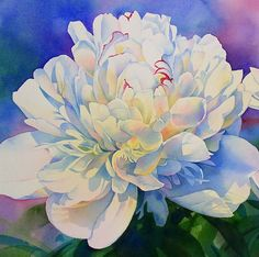 Flower painting - love the colorful shadows that showcase the white of the flower -Beautiful!