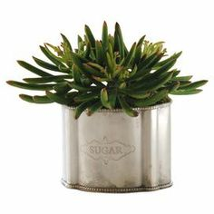 """Handcrafted faux succulent in a kitchen-inspired container.  Product: Faux botanical arrangementConstruction Material: Polyester, plastic and metalColor: GreenFeatures: HandcraftedDimensions: 10"""" H x 8"""" DiameterCleaning and Care: Dust with a dry cloth"""