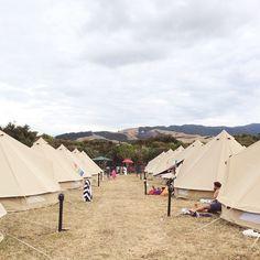 Wildernest Glamping   Splore Festival