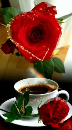 Good Morning Flowers Pictures, Good Morning Beautiful Pictures, Good Morning Roses, Flower Pictures, Cute Good Night, Good Night Sweet Dreams, Beautiful Rose Flowers, Beautiful Gif, Beau Gif
