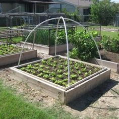 DIY PVC hoop bed cover. Learn how to make it at http://www.vegetablegardener.com/item/9895/diy-pvc-hoop-bed-cover