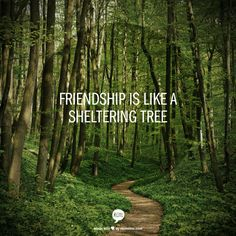 friendship is like a sheltering tree