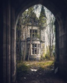 All of the memories I have locked away.  I stood in the doorway, looking at the house of memories, trying to work up the courage to go in among them.