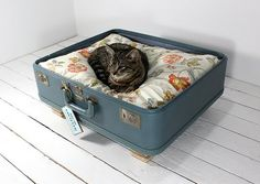 18 Ideas How To Reuse Old Suitcases In Home Decor - lit pour chat avec une vieille valise