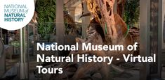 Take a walk through history. Discover the planet you live on. Virtual Museum Tours, Virtual Tour, Interactive Activities, Educational Activities, Salt Lake County, Pixel Image, Stress Busters, Leaving Home, Teaching Science
