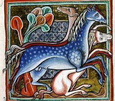 Wild horses. Bestiary, England 13th century (Bodleian Library, MS. Bodl. 764, fol. 46r)