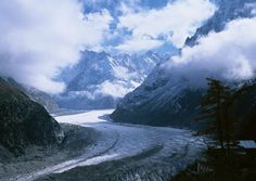 aletsch,aletsch,glacier,alpine,alps,climate,climate,change,cracks,crevasses,curved,danger,defrost,ecology,eiger,environment,frosty,frozen,glacial,glacial,period,glacier,great,aletsch,glacier,age,ice,crevices,