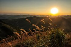 Mt. Mindungsan in Jeongseon, Gangwon-do. Robert Koehler Travel Photography