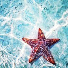 The deep blue sea ...