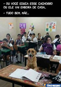 e ai mãe kkk Memes Humor, Jokes, Dog Humor, Animals And Pets, Funny Animals, Cute Animals, Funny Cute, Hilarious, Humor Mexicano