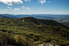 5 Beautiful Things To Do In Shenandoah National Park Stuff To Do, Things To Do, Hiking In Virginia, Shenandoah National Park, Bay Area, Acre, Beautiful Things, Waterfall, National Parks