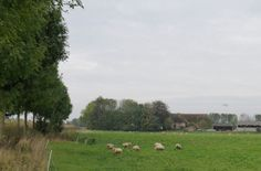 2014-10-26 Grote boerderij tussen Piepenbelt en Ganzenei