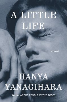 A Little Life by Hanya Yanagihara. A new favorite for me. Beautifully written and completely heart wrenching. Read in 2017.
