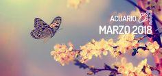 Horóscopo de Acuario para Marzo 2018, gratis en WeMystic. Todas los meses, las previsiones astrológicas para tu signo del zodiaco.