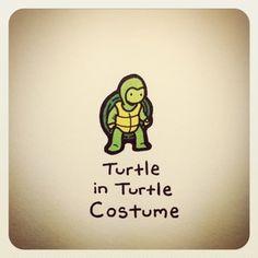 Turtle_Wayne_12.JPG 300×300 pixels