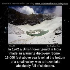 In 1942 a British forest guard in India made an alarming discovery. Some feet above sea level, at the bottom of a small valley, was a frozen lake absolutely full of skeletons. Scary Horror Stories, Short Creepy Stories, Paranormal Stories, Wow Facts, Wtf Fun Facts, Interesting Facts About World, Interesting History, Creepy Facts, Did You Know Facts