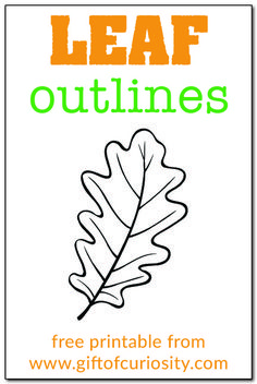 FREE printable leaf outlines for all your leaf-related art projects Autumn Activities For Kids, Fall Preschool, Kids Learning Activities, Spring Activities, Preschool Activities, Fall Arts And Crafts, Spring Crafts, Leaf Coloring Page, Coloring Pages
