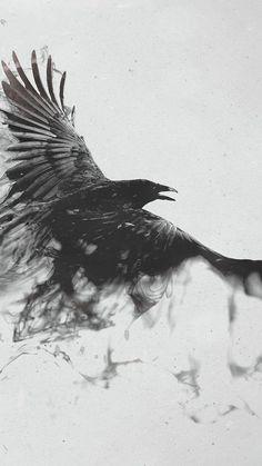 Black Smoke Crow ♥g♥ Raabe Tattoo, Trendy Tattoos, Cool Tattoos, Raven Flying, Bird Flying, Tatoo Brothers, Tatoo Bird, Black Bird Tattoo, Tattoo Tree