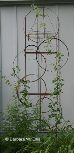 Circle trellis -- would be very pretty with morning glory vine.