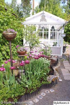 kevät,tulppaanit,kasvihuone,betonikoristelaatat,kukkapenkki