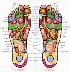 人上了四十歲以後,一定要多觀察自己的腳,而年輕人也一定要多觀察自己父母的腳,看看是不是有了痴呆線。如果有的話,就趕緊劃拉他們腳上的小腦反射區。最近幾年,我遇到的得老年痴呆的人明顯比前幾年多。很多中年人到我這兒瞧病,都抱怨說,父母得了老年痴呆,像個傻小孩兒,脾氣不小,還經常瞎胡鬧,做兒女的簡直是哭笑不得,都沒辦法了。還有的老年人得了老年痴呆,連家都找不着,做兒女的就滿大街