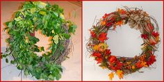 From weeds to wreath. I wrapped bittersweet vines around a trash can, zip tied them and let them dry out.  I vacuumed off the dried leaves then decorated the dried vines.  Cost: about $10