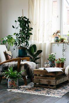 56 Easy Plants Design For Indoor Decoration - Decoralink Interior Exterior, Interior Design, Interior Plants, Interior Ideas, Deco Nature, Decoration Plante, Deco Boheme, Bohemian Interior, Cool Ideas