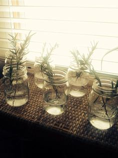Saving Lavender and Rosemary..
