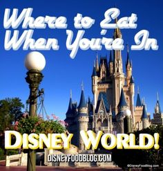 Tips from the DFB Guide: Expert Reviews of Walt Disney World Restaurants! Check out the DFB Guide to #WDW Dining!