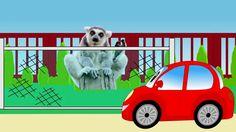 Машинка Бодя все серии подряд. Изучаем животных. Мультик для малышей