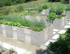 Cement block raised bed gardening!