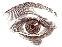 Image of 'Old engraving illustration of open human eye'http://www.colourbox.com/image/old-engraving-illustration-of-open-human-eye-image-1760009
