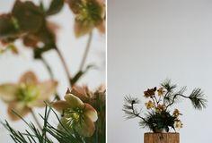 Erba Floral Studio » page 2