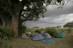 Use some special implementations when you camp during the rainy season. Learn how you can enjoy your camping in a wet weather.
