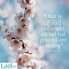 Hart, Afrikaans, Singing, Encouragement, Afrikaans Language