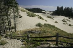Sand dunes at Florence Oregon.  Lived here about 4 months and it rained almost every day. I loved the sand dunes, though!