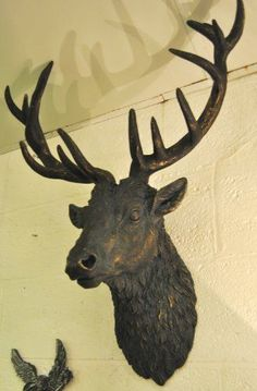 1000 Images About My Wishlist On Pinterest Stag Head