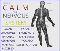 How To Improve Your Nervous System Naturally - 4 Methods To Heal and Soothe The Nerves