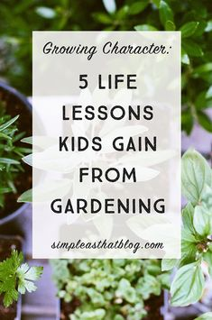 5 Life Lessons Kids Gain from Gardening—Because it's a privilege to watch a kid's character grow right alongside your little plants!