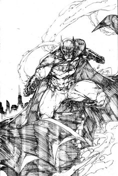 Brett Booth was the main artist on the Anita Blake Vampire Hunter series, artist for the New 52 Teen Titans and Nightwing ongoing series. Now he does the occasional cover and several character designs for DC.