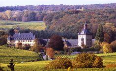 Schloss Vollrads, Oestrich-Winkel, Rheingau, Germany