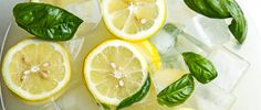 You probably have some leftover basil kicking around your refrigerator right now. Here's how to use up leftover basil, from adding it to your lemonade to your ice cream. Spiked Lemonade, Basil Lemonade, Frozen Lemonade, Summer Drinks, Fun Drinks, Beverages, Summer Shandy, Good Lemonade Recipe, Whey Protein Drinks