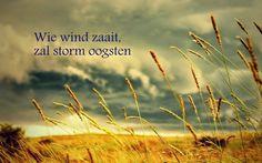 Citaten en Wijze Woorden uit de Islam: Wie wind zaait, zal storm oogsten