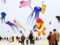 See Europe's biggest kite festival soar to astounding heights. Held annually in the French commune of Berck-sur-Mer, along northern France's Opal Coast, the event draws kite fliers from all over the world, who dazzle with colorful, air-borne creations before crowds of roughly 600,000 spectators.